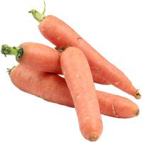 Möhren-Karotten
